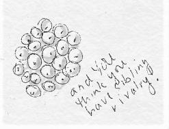 egg mass drawing