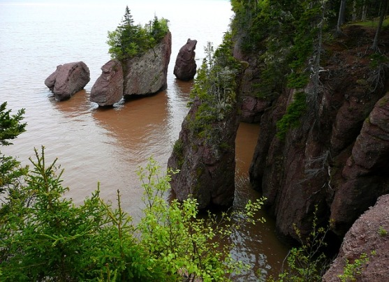 hopewell-rocks-54993_640