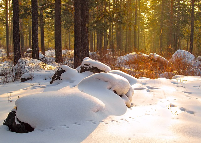boulder with snow