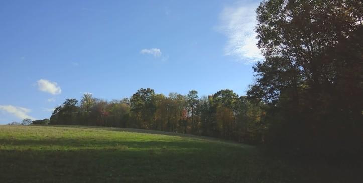 field at farm
