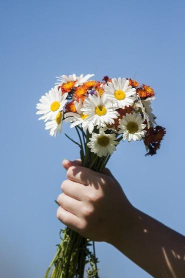 flower-3562051_640