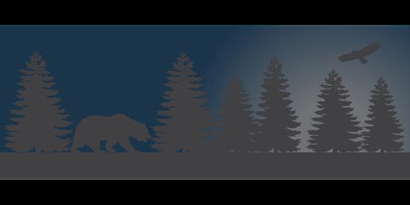 bear-1597095_640