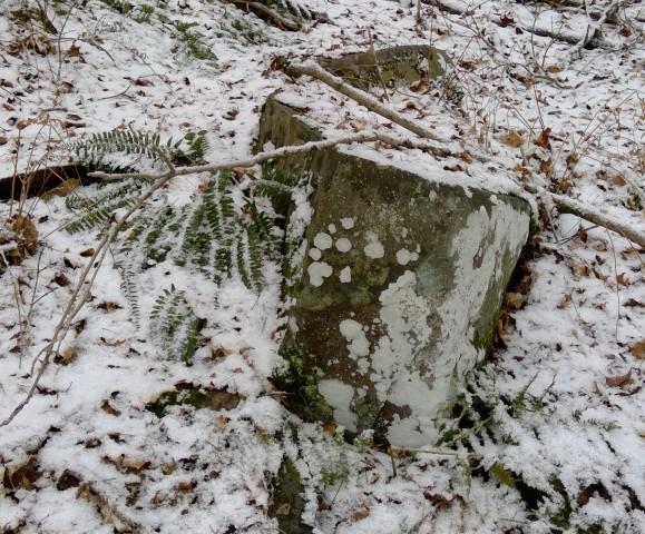 boulder with lichen 4